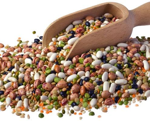 Legumes & Pulses
